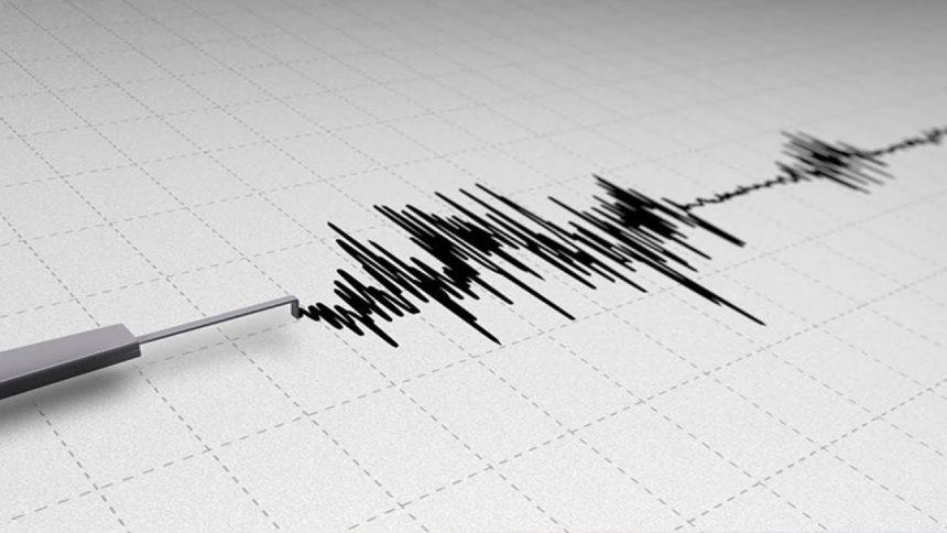 via20CNN20Earthquake20seismic20detector_1560833829432.jpg.jpg.jpg_38727858_ver1.0